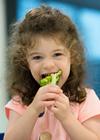 Australian Child Health Poll current poll report thumbnail