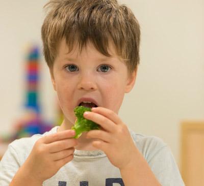 Australian Child Health Poll current poll useful links image